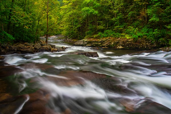 Tellico River Smoky Mountains photography