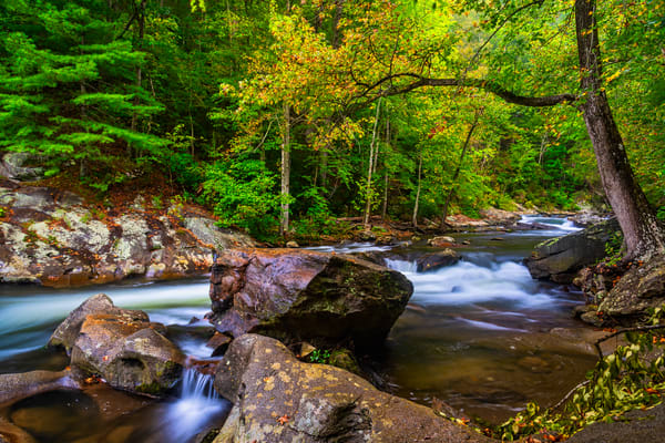 Tellico River mountain stream photography