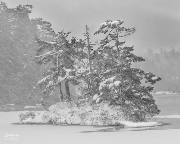 Island in a snowstorm.
