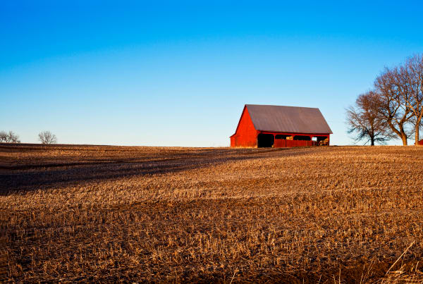 Red Barn Afternoon