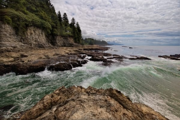Gentle waves on Vancouver Island's west coast