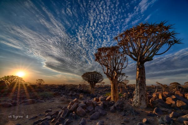 Sunrise at Quiver Tree Forest, Namibia
