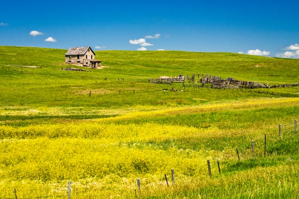 Little house on the prairie photography