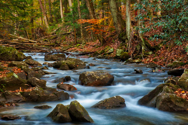 Laurel Fork fall West virginia photography