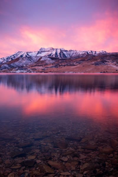 Vertical Winter Timp Reflection