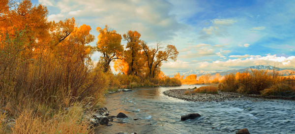 provo river fall panorama
