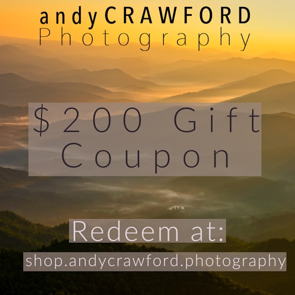 $200 gift card fine art photography coupone