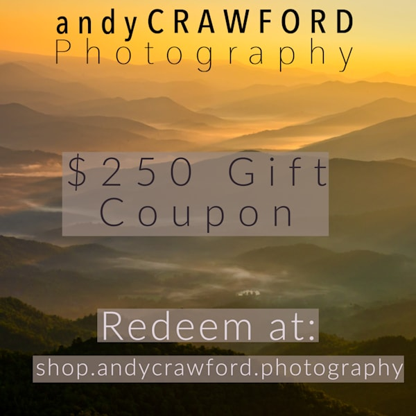 Fine-art photography prints gift cards