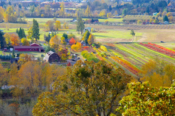 South Willamette Valley