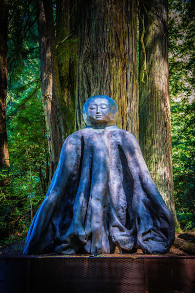 Goddess Of The Redwoods Photography Art | BenjieArts