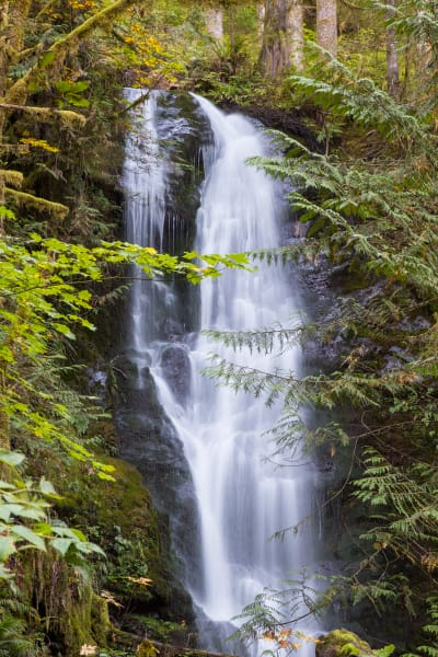 Olympic National Park Falls 1 Photography Art | Leiken Photography