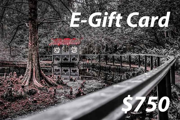 $750 E-Gift Card