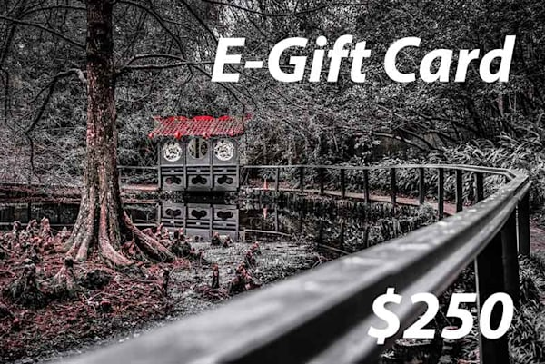 $250 E Gift Card | Deep South Focus Photography, LLC
