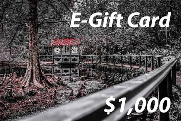 $1000 E-Gift Card