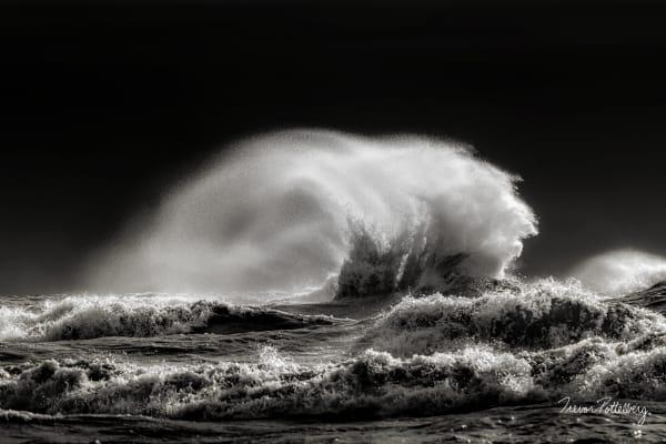 Fear The Reaper Photography Art   Trevor Pottelberg Photography