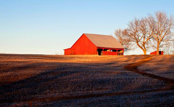 Brilliant Red Barn