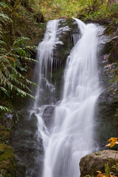 Olympic National Park Falls 2 Photography Art | Leiken Photography