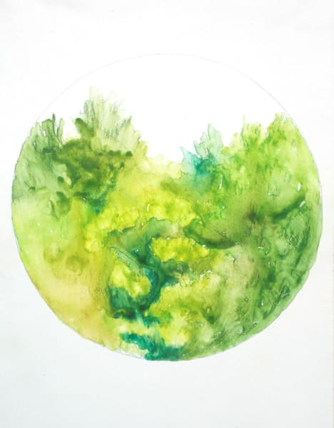 Vermont Trees Art by fitzgeraldart