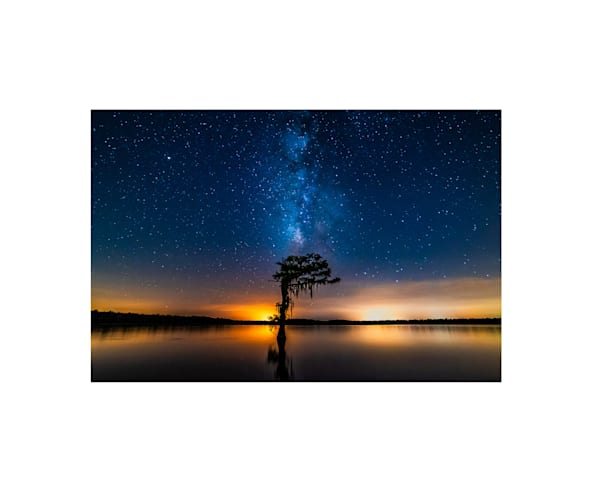 Swamp Milky Way photography print