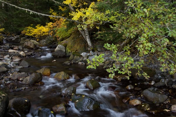 Fall Stream Photography Art | Leiken Photography