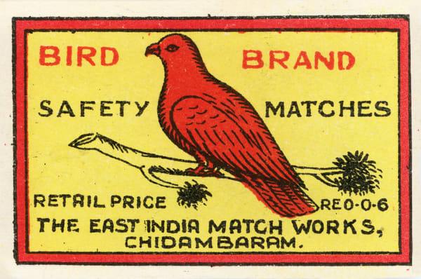 Bird Brand
