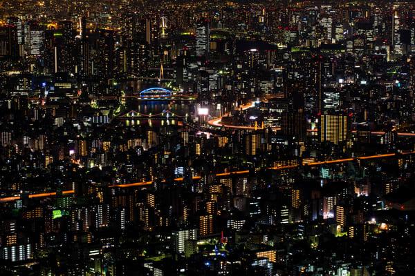 Tokyo New Perspective