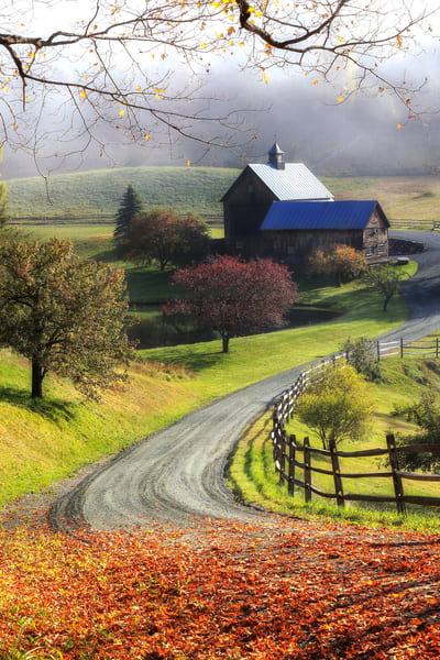 Vermont Fall Foliage Nature Photography Print | Robbie George