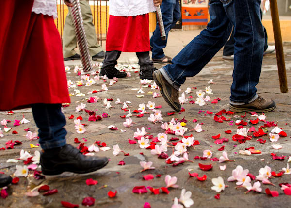 Walking On Rose Petals