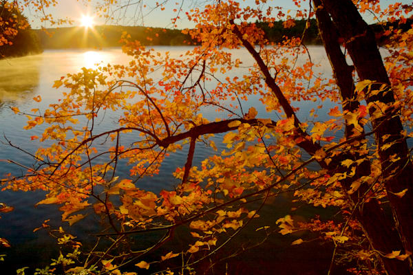Autumn Sunrise - Walden Pond