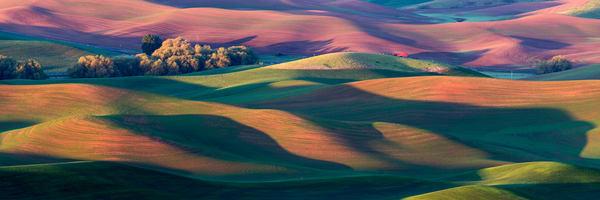Palouse sunrise rolling hills panorama