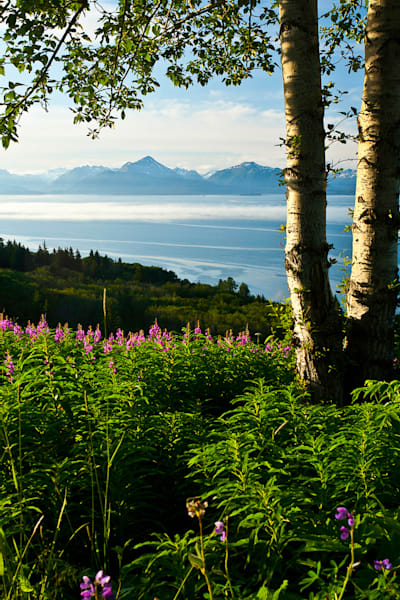 Alaska - Homer