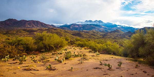 Four Peaks Pear Pano