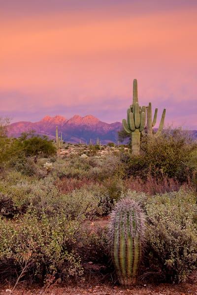 Four Peaks - Sunset Pink V Photo Print
