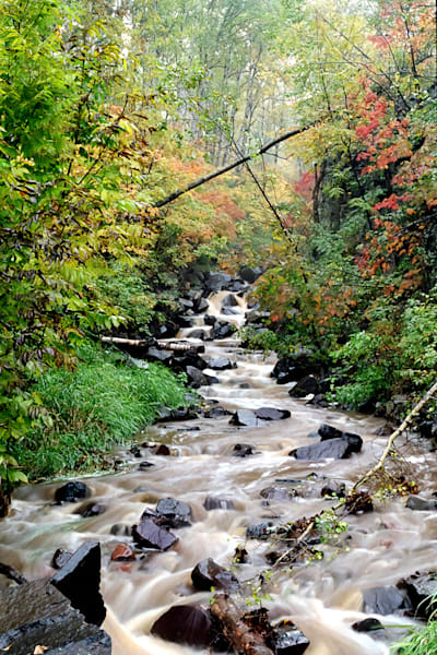 KennedyCreek  Photo Print
