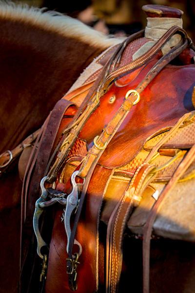 Saddle Photo Print