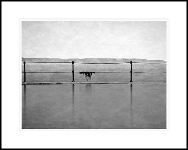 51 La Valette Bathing Pool Seaweed Art | Roy Fraser Photographer