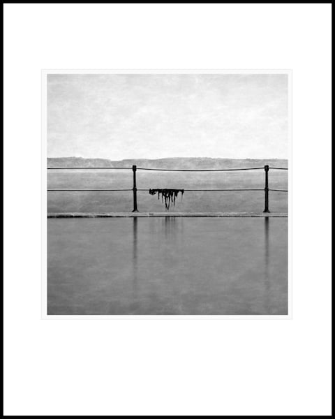 52 La Valette Bathing Pool Seaweed Square Art | Roy Fraser Photographer