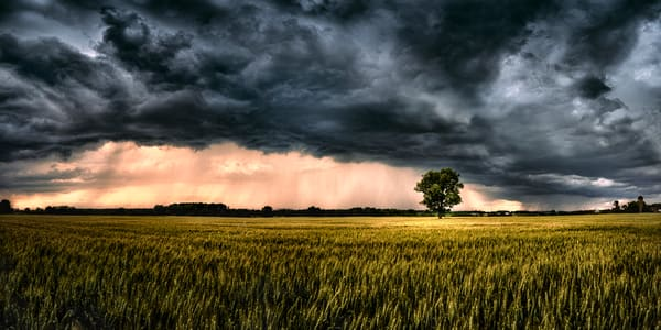 Ominous In Nature Photography Art | Trevor Pottelberg Photography