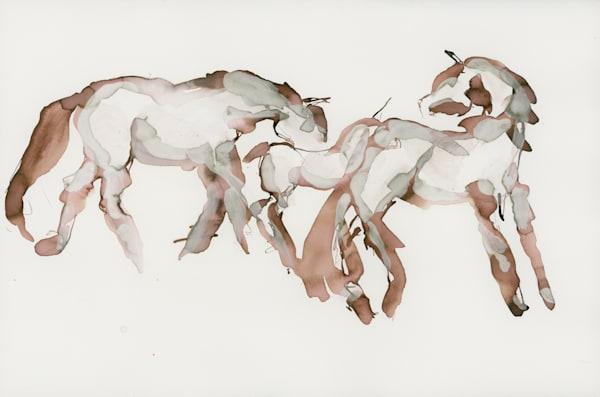 Praire Horses