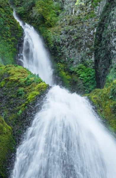585-Oregon 2016