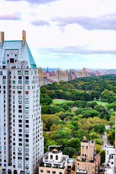 NYC Central Park Vista DSC_9627