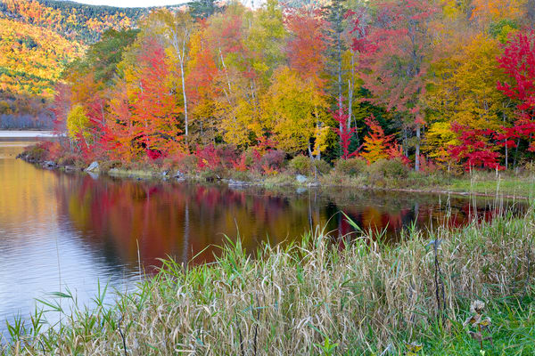 Colors of the Fall Lake | Beautiful Landscape Photography - Art By Smiths