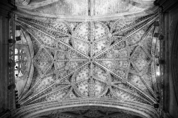 Cathedral Ceiling: By Shane O'Donnell