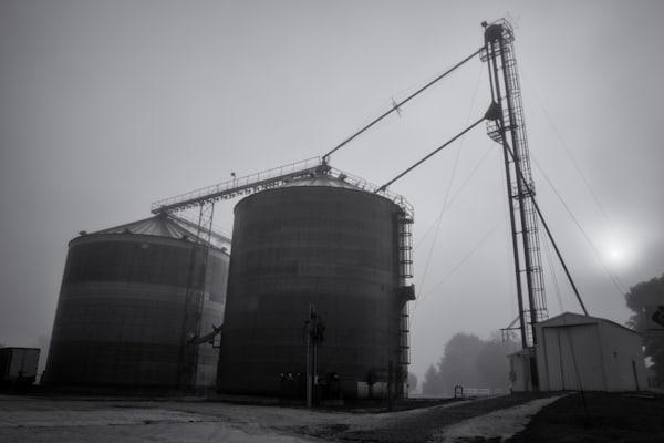 Foggy Morn   Houston, Mn Photography Art   Namaste Photography
