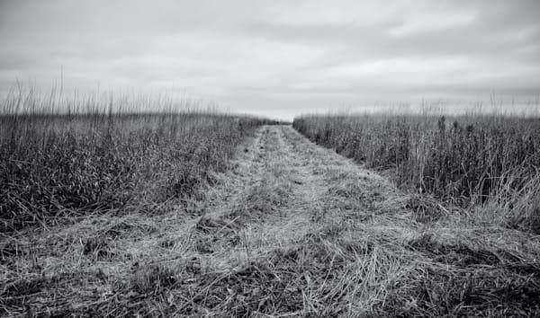 Field & Sky  Rushford, Mn Photography Art   Namaste Photography