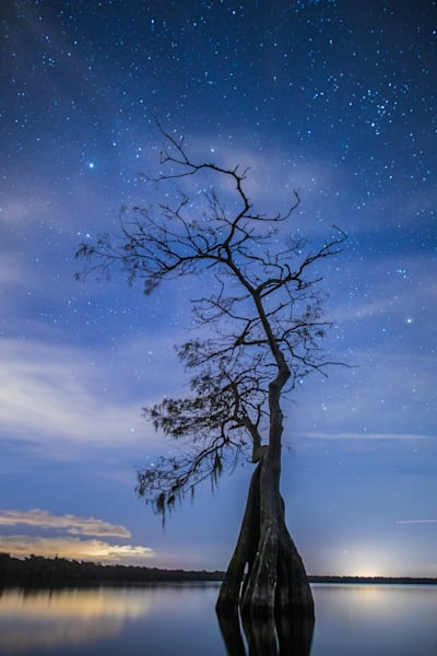 Nature Nightscapes