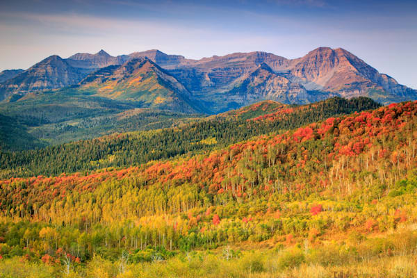 fall color on the east slope of timp
