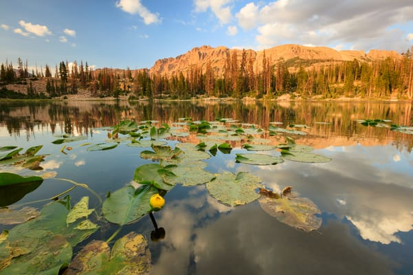 butterfly lake uinta mountains reflection