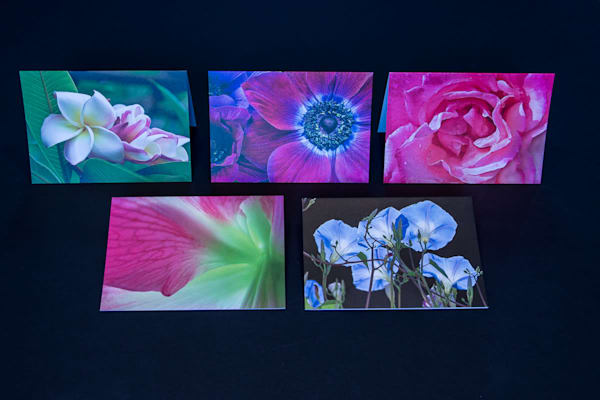 Flowers #1 Set of 5 Blank Greeting Cards