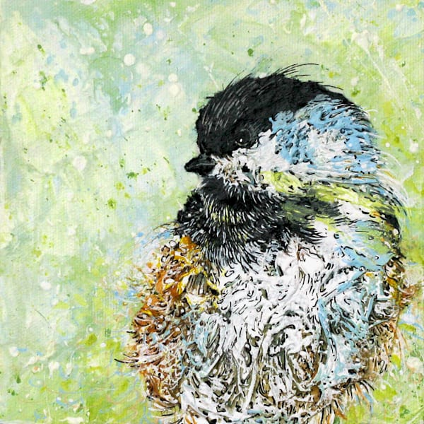 Sweet Chickadee II | Col Mitchell Contemporary Paper Artist